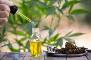 How To Buy The Best CBD Products and What To Look For In A CBD Company